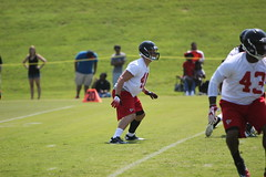 2012 Atlanta Falcons Minicamp - Day 3 (Atlanta_Falcons) Tags: fff minicamp 2012offseason atlminicamp patschiller atlminicampday3
