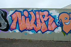NUIR (Di's Free Range Fotos) Tags: uk graffiti brighton nuir