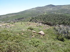 HIKING STONEWALL PEAK, CA (ramidogg) Tags: mountain mountains nature hiking walk hike trail wilderness lakers rami sandiegoca julianca ramidogg cuyamacaca clubramidogg stonewallpeakca cuyamacaranchostateparkca stonewallpeaktrailca pasopicachocampgroundca