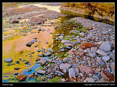 hog springs (Intrepid Tripod) Tags: reflections utah sandstone rocks stream desert tripod coloradoriver 1989 flowing ektachrome sandstonecliffs largeformat 5x7 april6 glencanyonnationalrecreationarea dirtydevilriver northwash hogsprings conleywoodenfoldingcamera 163mmlens