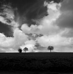 Tree for two and two for tree * (larbinos) Tags: france nature noir noiretblanc pentax mai nuage paysage tamron arbre blanc k5 1024 saintsavin isère albin 2013 larbinos