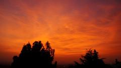 Red Haze (hmerinomx) Tags: city blue trees red sky orange silhouette azul clouds sunrise mexico intense rojo df arboles horizon amanecer cielo nubes silueta activity neblina volcanic naranja daze horizonte slight actividad volcanica