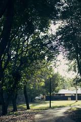 Late Night Sunshine (Harrison Cable) Tags: barcelona life china california birthday christmas city family flowers blue autumn friends light summer portrait england sky blackandwhite bw food dog baby chicago canada black france flower color berlin green bird art fall love film beach halloween church girl beauty car fashion birds bike festival architecture backlight clouds cat canon germany garden de landscape geotagged fun photography eos graffiti dance football concert asia europe day florida band australia favourites 1100d harrisoncablephotography