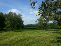 "View of the hills from the back of the orchard • <a style=""font-size:0.8em;"" href=""http://www.flickr.com/photos/76114232@N04/8913284690/"" target=""_blank"">View on Flickr</a>"