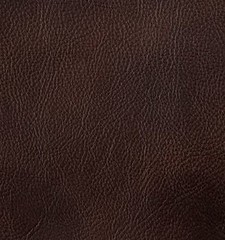 "Frye Pebbled Full-Grain Leather • <a style=""font-size:0.8em;"" href=""http://www.flickr.com/photos/65413117@N03/9613362045/"" target=""_blank"">View on Flickr</a>"