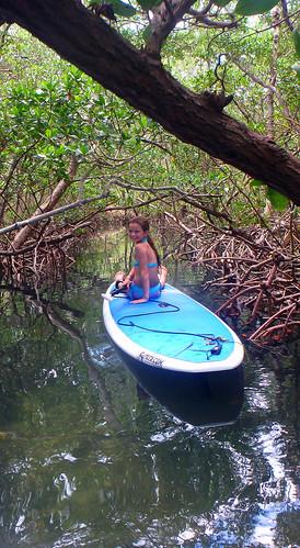 5-17-15 JackDee_Terry & Co Paddleboard Tour Sarasota  (17)