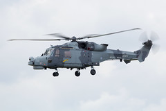 ZZ376 Royal Navy Agusta Westland AW159 Lynx Wildcat AH1 (amisbk196) Tags: uk kent unitedkingdom aircraft aviation navy royal airshow wildcat amis westland lynx agusta 2015 bigginhill ah1 aw159 zz376