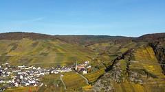 Autumnal Vineyards (lstr  clonn) Tags: autumn mayschos ahr ahrtal herbast fall weinberge weinberg vineyard germany romance romantik wein wine deutschland