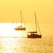 sailing at the golden hour - Tel-Aviv beach
