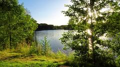 2016-07-02_20-49-11_DSC-HX90V_4179_DxO (miguel.discart) Tags: 2016 24mm aube belgium bru brussels bruxelles bxl couchedesoleil createdbydxo crepuscule dawn divers dschx90v dusk dxo editedphoto focallength24mm focallengthin35mmformat24mm iso80 levedesoleil soleil sony sonydschx90v sunrise sunset twilight
