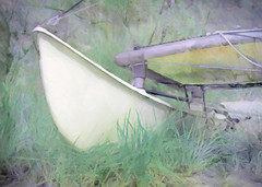 waiting in the grass (Hal Halli) Tags: boat sea summer beach wallart catamaran dockbay crazygeniuses