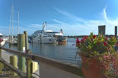 Yachts by the Boardwalk (Wayne Daniels) Tags: northcarolina water waterfront recreation flowers boats