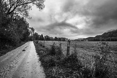 Black and white morning (wigerl - herwig ster) Tags: octobre fujixt1 102016 austria 2016 early krnten trees samyang12mm fuji barbedwire weitwinkel sterreich bw fence wideangle carinthia europa zaun european samyang wolkig stacheldraht licht light feldkirchen foto morning oktober mountains blackandwhite bume wolken europe clouds cloudy bume krnten sterreich