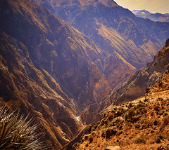 Colca Canyon, Peru (szeke) Tags: canyon colca colcacanyon landscape mountain peru arequipa pe