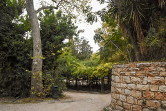 Wall and Pergola (gliak00) Tags: athens greece nationalgardens park path pergola plant tree wall athina atticaregion