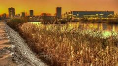 Science Park Sunset (Skylark92) Tags: nederland netherlands holland amsterdam oost water lake meer science park sunset evening avond zonsondergang hdr autumn herfst east