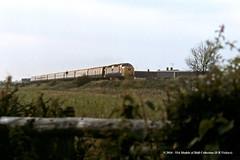 22/06/1981 - Chaloners Whin Junction, York. (53A Models) Tags: britishrail deltic class55 55008 thegreenhowards diesel passenger train york railway locomotive railroad