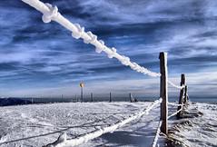 Vosges (denismartin) Tags: denismartin vosges vosgesmountain vogesen winter snow freezing sky cloud weather lorraine france