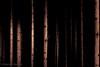Gefangene Stille (Martin.Matyas) Tags: