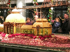 HTS-10 (Peter Parides) Tags: unitedstates christmas trains newyorkbotanicalgardens new york city newyork