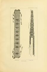 n100_w1150 (BioDivLibrary) Tags: antiquities indianart indians shellsinart smithsonianlibraries bhl:page=11258701 dc:identifier=httpbiodiversitylibraryorgpage11258701 manyhatsofholmes wampum belts artist:name=katecliftonosgood taxonomy