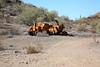 11-4-16 Cabin Ride-130 (Cwrazydog) Tags: arizona trailriding