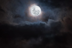 Mysterious Sydney Super Moon (danielacon15) Tags: moon night supermoon sydney moment outdoors dramatic mysterious clouds november 2016