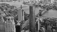 ... bridges ... (wolli s) Tags: flickr manhatten ny nyc newyork newyorkcity owo oneworldobservatory us usa above bw bridge brooklyn brooklynbridge eastriver schwarzweis aida kreuzfahrt diva