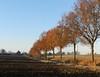 Bocholtz, 28 november, Foto: Leo Hagelstein