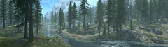 River Runneth (D U B L) Tags: bethesda pano panorama the elder scrolls v skyrim special edition se tesv tamriel video game studios outdoor landscape forest trees mist fog mountains river village fauna bridge arch mods computergraphic digital digitallygenerated digitallygeneratedimage 3d background computer graphics gaming gamingscreenshot games gamingart gallery gamingpicture pics pc pic picture photography photo sceenshot screenshots screen shot shots nvidia gpu