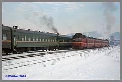 Ukraine 94 Winter_139aa (r_walther) Tags: baureihel baureihete breitspur dampflok dampflokomotive doppeltraktion dzherelo exbaureihe52 exdeutschereichsbahn lok5141 lok6115 stöckli ukraine ukrsalisnyzja umgespurt vorspann winter zakarpattia ukr