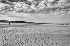 All to myself (kceuppens) Tags: beach strand wolken clouds blackandwhite black white zw bw zwart wit cadzand nederland thenetherlands nikond810 nikon d810 nikkor24120f4vr 24120 buiten outdoors
