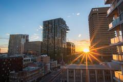 central park, Sydney, NSW, AU (gi-moon Kang) Tags: nsw sydney australia uts central park cityscape sunset nikon d5300