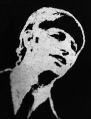Macro Monday - Beatles/beetles (f l a m i n g o) Tags: ringo beatles shirt macromonday group theme 22496
