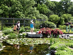 Wheaton, IL, Cantigny Park, Idea Garden, Checking Out the Frogs in a Lily Pad Pond (Mary Warren (7.6+ Million Views)) Tags: wheatonil cantignypark nature fauna flora green plants garden lilypond water humans people children