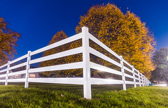 Twilight Fence (VBuckley.com) Tags: fence whitefence whitefencefarm buckleyfence fall autumn outdoor illinois chicagoland midwest sunset leaves yellowleaves pettingzoo longexposure blue corner tree