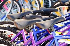 Bicycles and More Bicycles (#1362) (protophotogsl) Tags: color bicycle wheel spring rad bicicleta bicycles april bicyclette  fahrrad multicolor vlo roti sykkel fiets rower cykel polkupyr bicicletta  xe  bizikleta   sepeda bicikli   hjl basikal jalgratas bisiklet kerkpr bisikleta velosiped  dviratis  bicikl rothar  divritenis ap bajk   jzdnkolo biciclet velosipds  protophotogsl biiklet     bisiklt       296edit