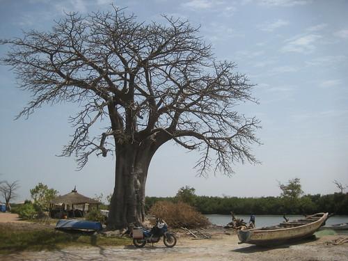 Gambian Senegalese borders