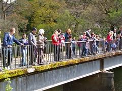 "Killin Duck Race 2012 (nz_willowherb) Tags: river see scotland duck tour perthshire visit tourist visitor duckrace killin lochay to"" ""go visitkillin seekillin gotokillin"