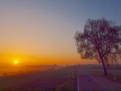 irgendwo somewhere 2013P5059841 (hans 1960) Tags: sky sun tree nature sunrise landscape colours natur felder himmel landschaft sonne sonnenaufgang baum farben