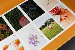Velvet Fine Art Paper #1