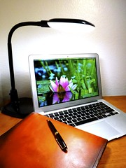 Macbook Air 2013 News May Lumiy LEDs LED Lamp1060899 (stanfordgreentrees) Tags: pro macbook macbookpro macbookair macbookproretina 15inchmacbookproretina