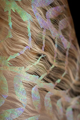 barbara medo insected textiles detail wasp 3 (barbaramedo) Tags: inspiration detail reflection texture nature fashion closeup glitter hair insect print gold reflecting design pattern shine wasp foil metallic femme details style insects collection textures textile barbara fabric prints designs material iridescent textiles delicate iridescence fatale materials styling shimmer fabrics holographic medo foils sinera insected heatpressing