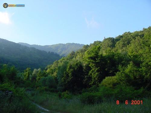 CZ-Lamezia Terme-Parco Mitoio 02_L