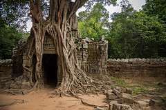 Ta Som temple in Angkor Wat, Cambodia. (cookiesound) Tags: city trip travel inspiration tree travelling architecture canon temple photography reisen cambodia kambodscha fotografie khmer documentary angkorwat jungle siemre