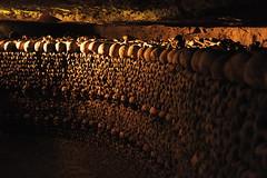 Bone Art (Rozzdth) Tags: paris france dark skull mosaic bone somber catacomb