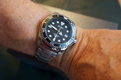 DSC01307 (CraigShipp.com Photos - Events / People / Places) Tags: divers watch automatic edc shogun titanium seiko 200m sbdc007