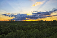Wetland's Sunset (Kansas Poetry (Patrick)) Tags: kansas lawrencekansas bakerwetlands wakarusawetlands patrickemerson patricknancyforever