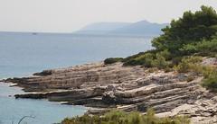 FKK spiaggia (morgana 21) Tags: mare blu natura sole croazia fkk spiaggia nudismo isola scogli pini ginepri salsedine naturalismo isoladihvar otokhvar nudorelax