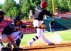 IMG_1186 (Photography by Katie Dugan) Tags: baseball southcarolina usc scrimmage gamecock fallball gamecocks carolinabaseball